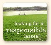 Looking for a responsible lessee?
