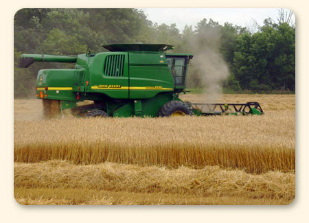 Combine in the field
